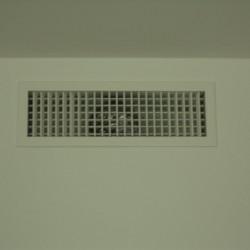 DSC03784 (Large)